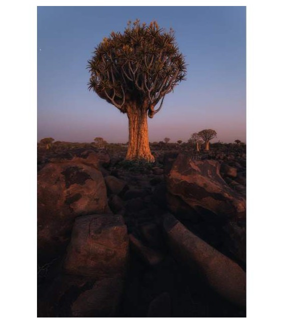 VIAJE NAMIBIA